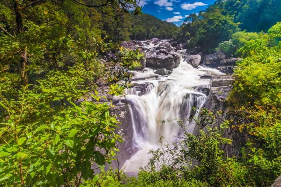 Ranomafana_Nationalpark