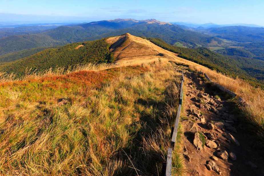 Bukowe Hills