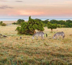 Kenia Sehenswürdigkeiten: Die Besten Attraktionen In Kenia