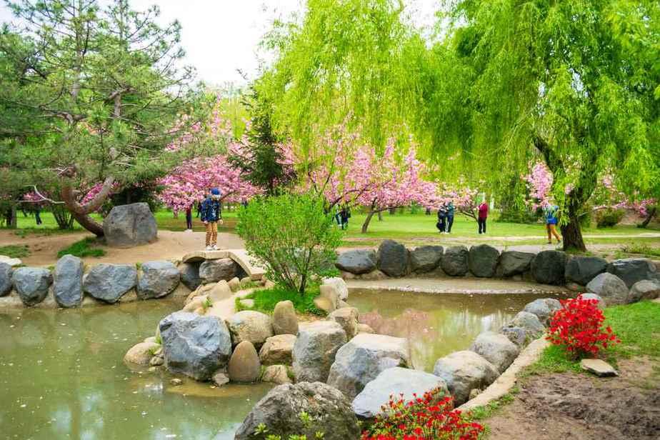 Japanischer Garten im Herastrau-Park Die 12 schönsten Instagram-Spots in Bukarest