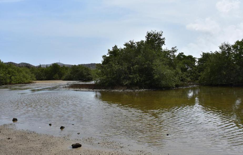 Spanische Lagune Aruba Sehenswürdigkeiten: Die 22 besten Attraktionen