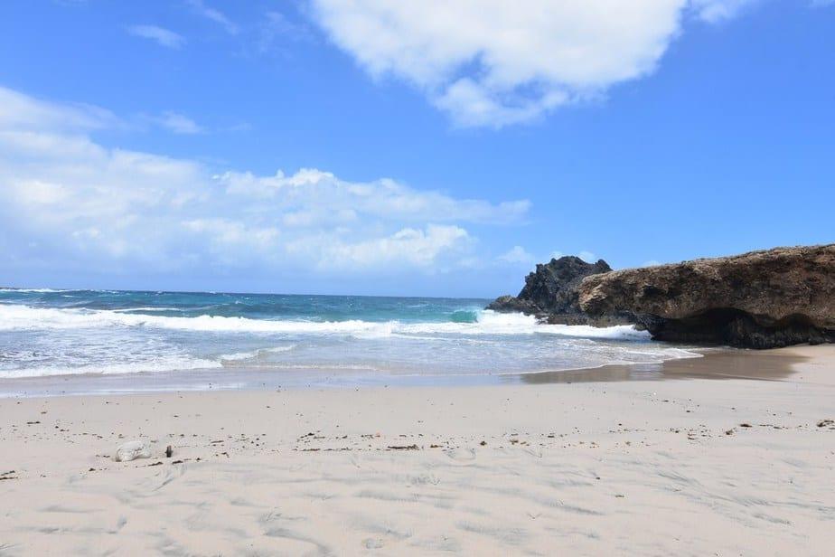 Andicuri Beach Caribbean Dreams: Das sind Arubas schönste Strände