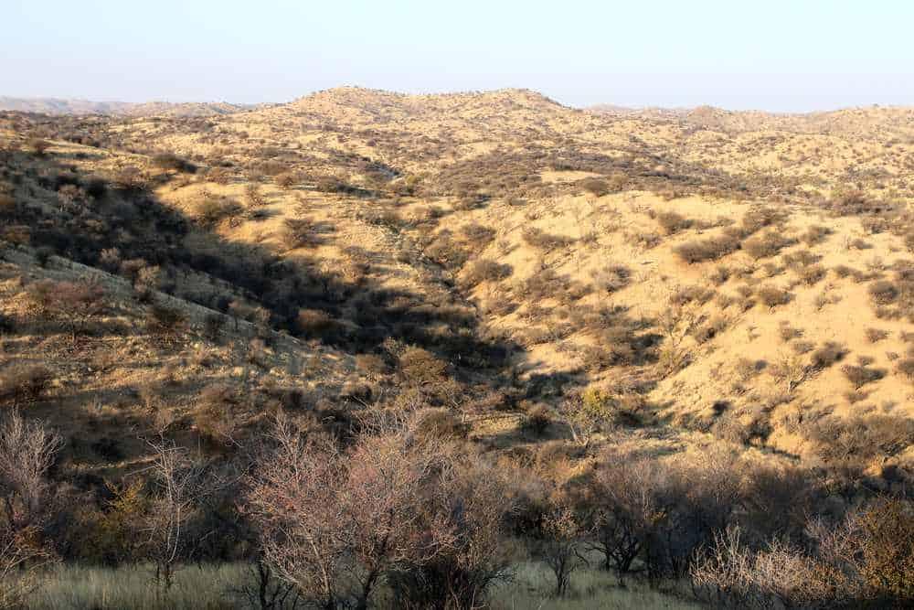 Daan-Viljoen-Wildpark Windhoek Sehenswürdigkeiten: Die 20 besten Attraktionen