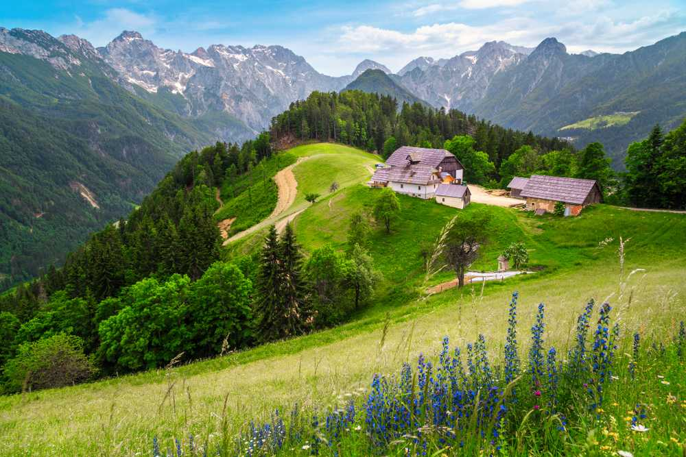 Logartal  Slowenien Sehenswürdigkeiten: Die 20 besten Attraktionen