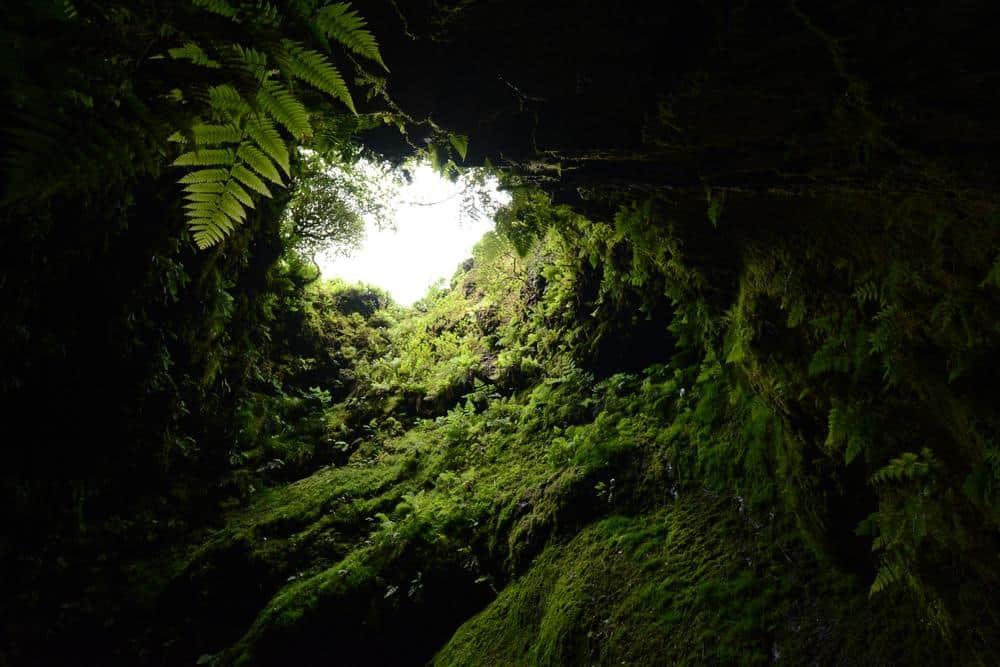 Naturschutzgebiet Algar do Carvão Azoren Sehenswürdigkeiten - Die 22 besten Attraktionen