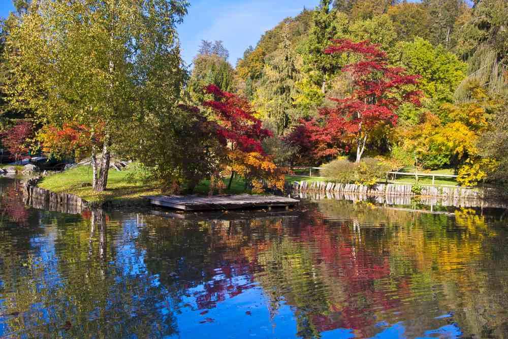 Botanischer Garten von Ljubljana Die besten Parks in Ljubljana, Slowenien