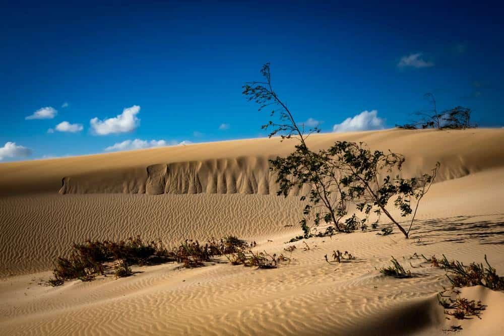 Naturpark Corralejo Fuerteventura Sehenswürdigkeiten: Die 20 besten Attraktionen