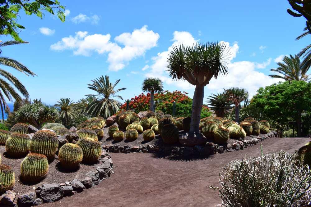 Oasis Park Fuerteventura Sehenswürdigkeiten: Die 20 besten Attraktionen