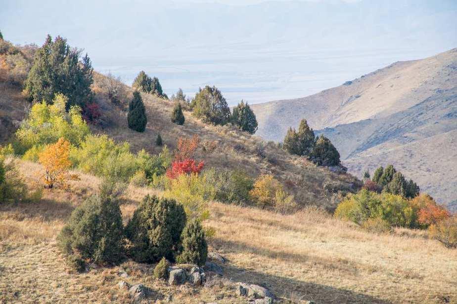 Naturreservat Aksu-Zhabagly Kasachstan Sehenswürdigkeiten - Die 20 besten Attraktionen