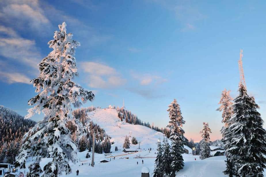 Grouse Mountain Vancouver Sehenswürdigkeiten - Die 20 besten Attraktionen