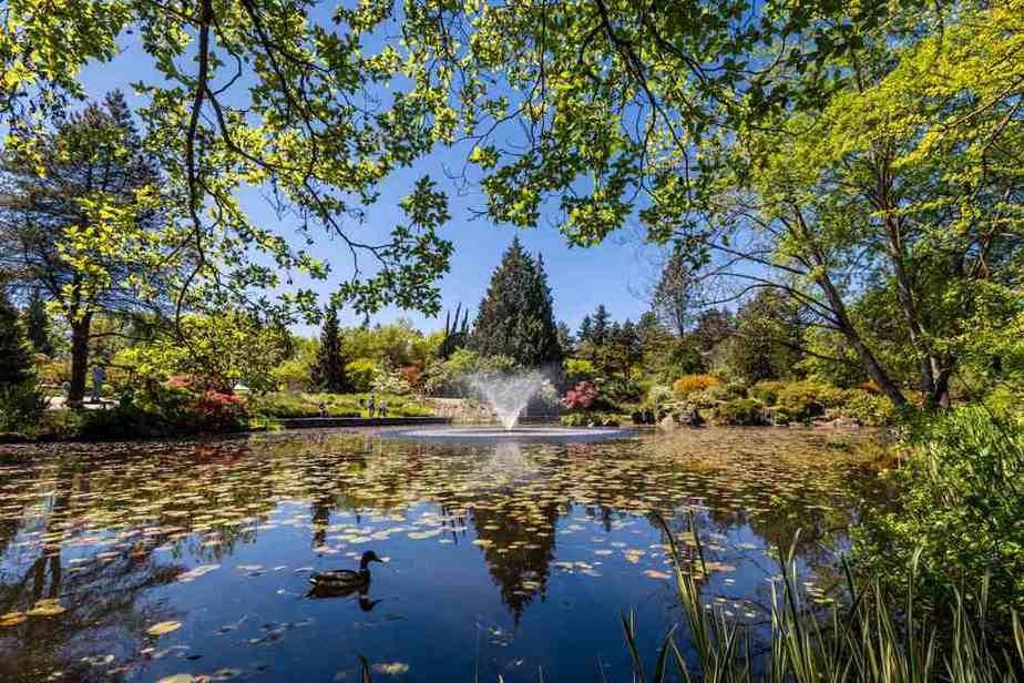 VanDusen Botanical Garden Vancouver Sehenswürdigkeiten - Die 20 besten Attraktionen