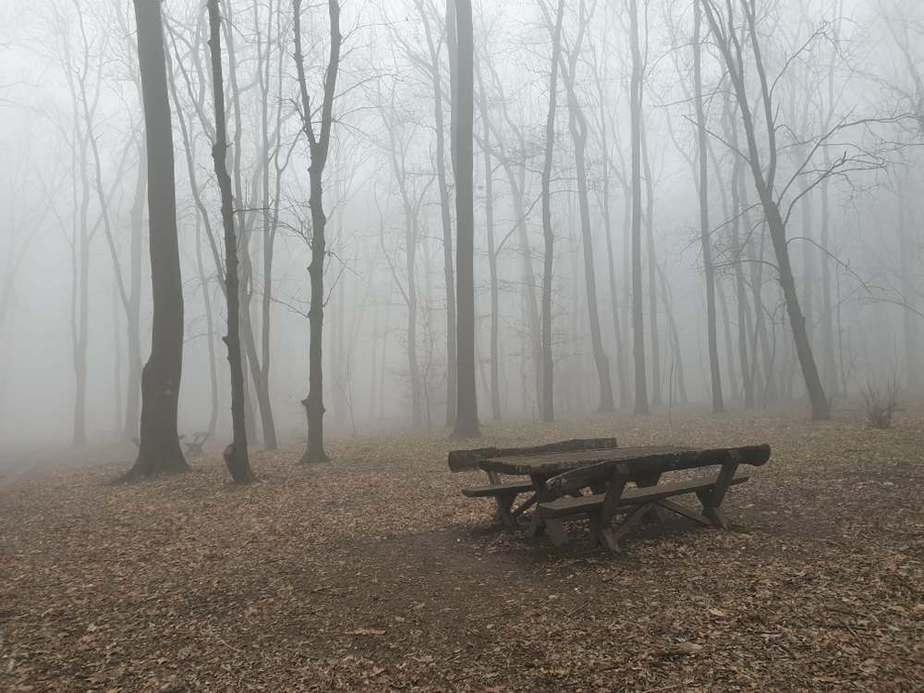 Zvezdara Park-Wald Die schönsten Parks und Grünflächen in Belgrad, Serbien