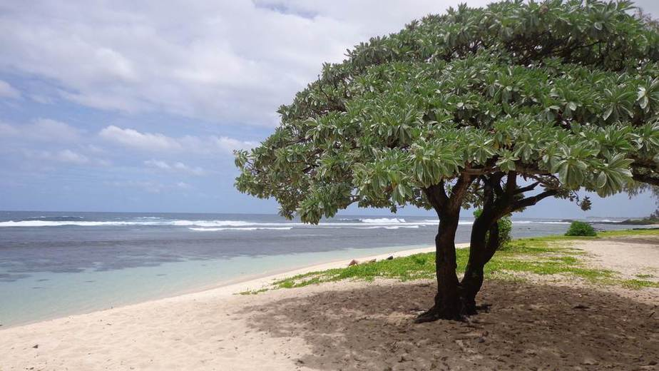 St Felix Beach Die schönsten Strände auf Mauritius