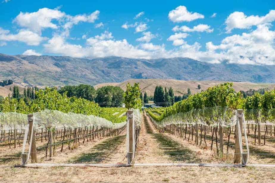 Gibbston Valley Winery Neuseeland Sehenswürdigkeiten: Die 20 besten Attraktionen