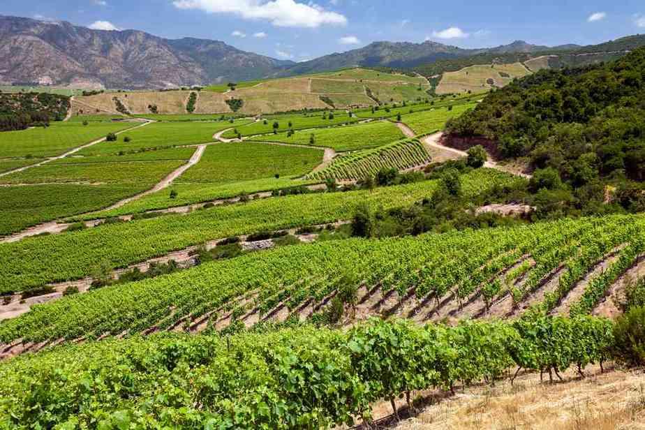 Wein-Tal von Colchagua Chile Sehenswürdigkeiten: Die 20 besten Attraktionen